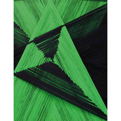 <b>BIFORCAZIONE VERDE/NERO</b> 2015<br> 								Fili di calza tirati su teca in legno<br> 								Stockings thread on wood case<br> 								100x100 cm